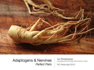 Adaptogens and Nervines